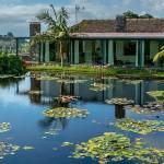 Casa do Tanque - Casas do termo Azores